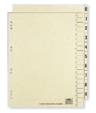 Trennblätter 2-seitig bedruckt 400004663 chamois 100 Stück