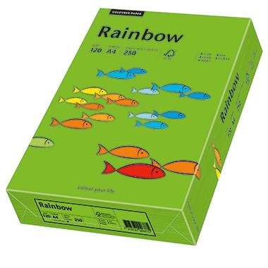 Kopierpap. A4 120g/m² intensivgrün (78) 250 Bl./Pa Inapa Colors 2100011347