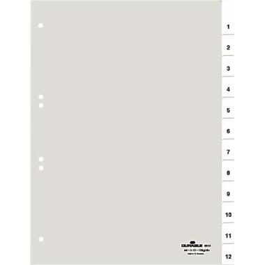 Register A4 1-12, Jan.-Dez., blanko transparent Größe (B x H): 210/225 x 297 mm